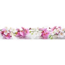 Панель AF48 Нежные орхидеи 2800х610х6мм